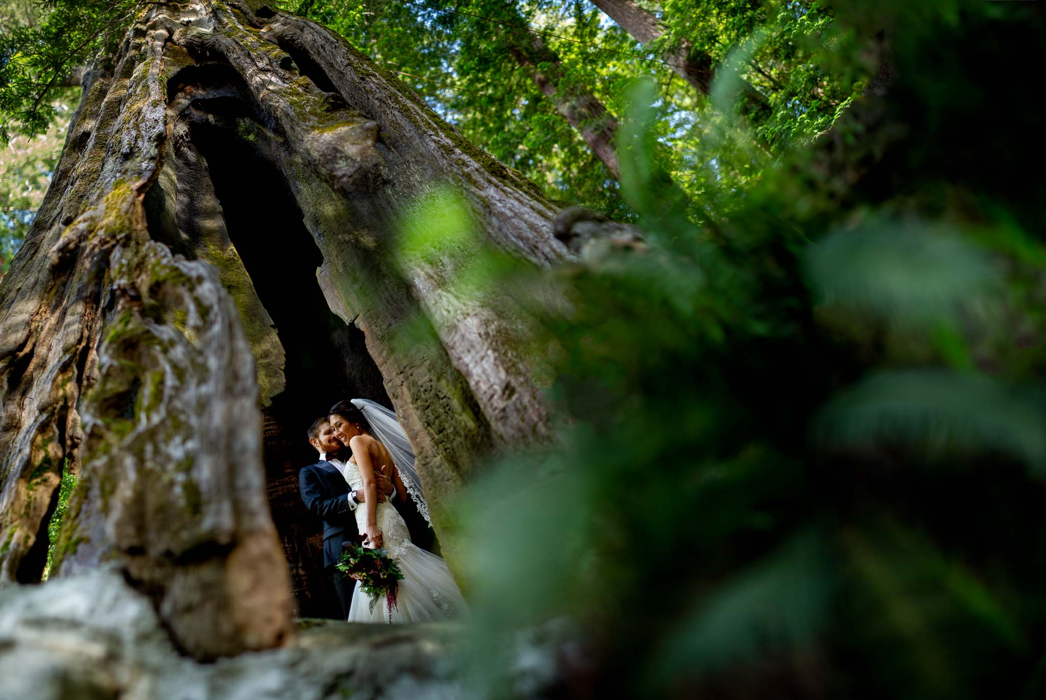 Redwoods Wedding in Humboldt California JOS studios