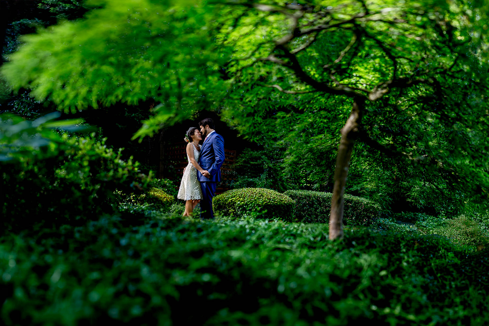 Bride and Groom in trees with Brenizer Method in Washington