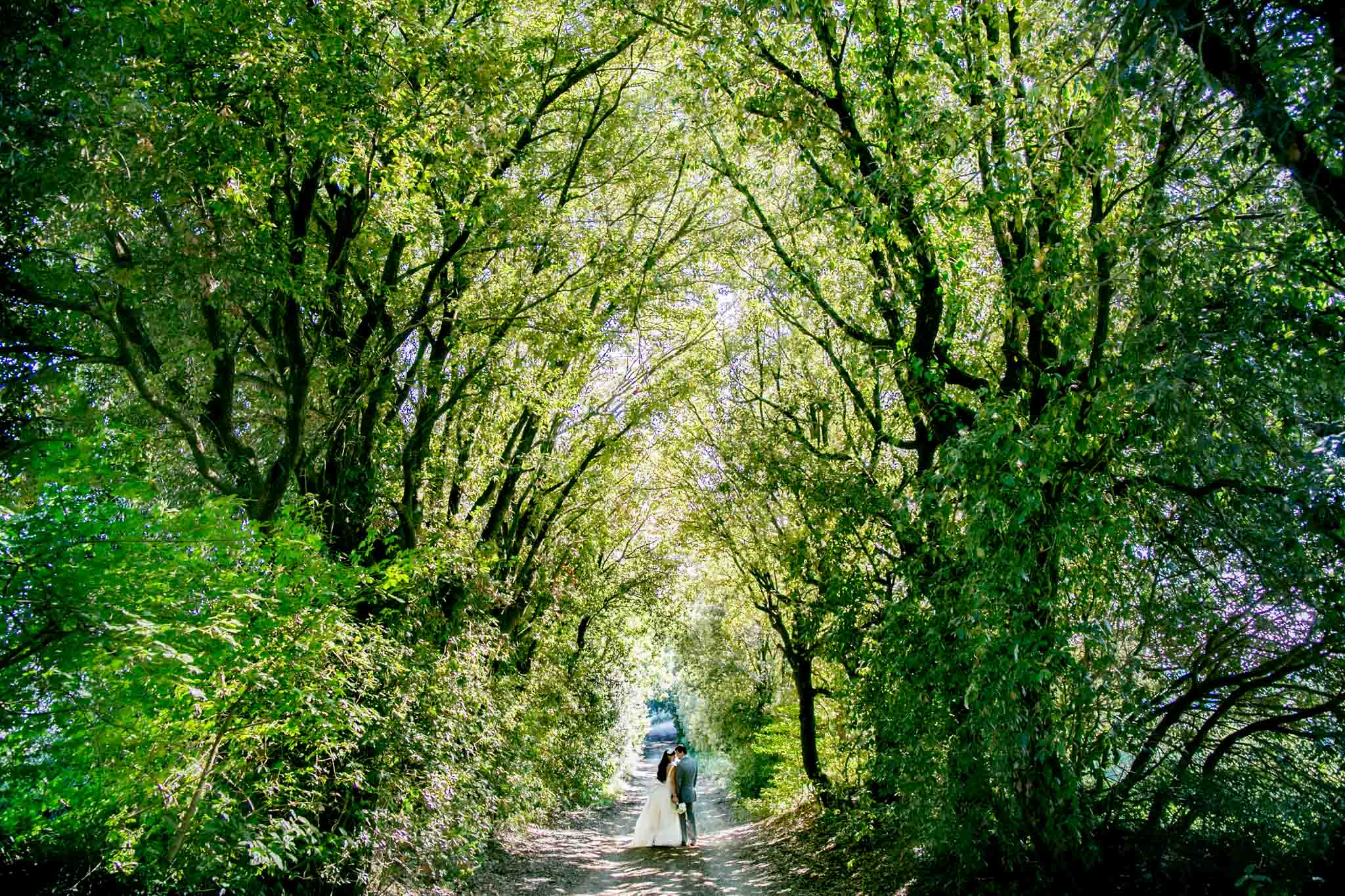 Bride and Groom walking down long road with massive trees toward Villa Tre Grazie in Todi Italy in Umbria