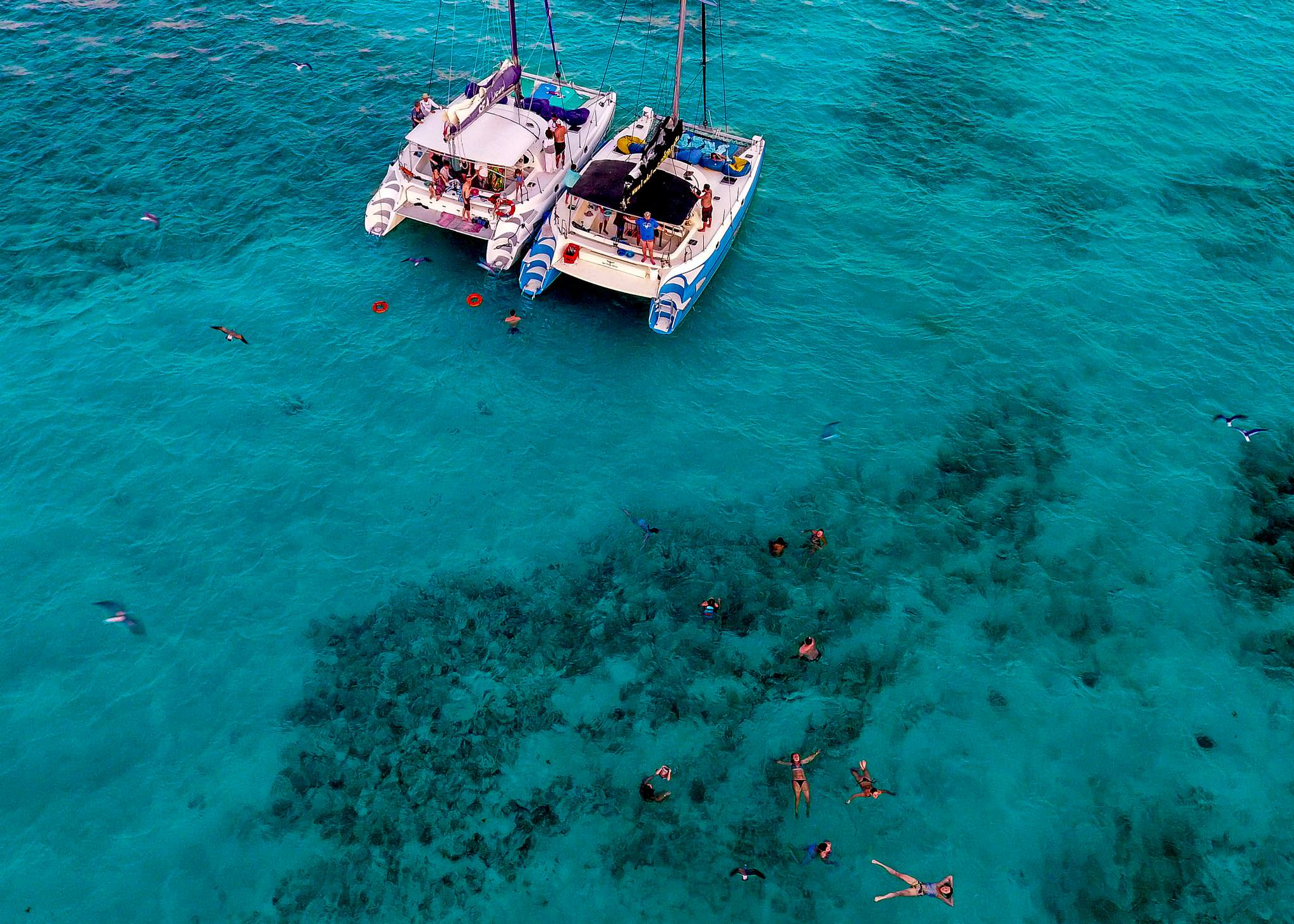 Areal view of Belize reef for Nikki and Paul Catamaran Cruise one day before wedding at Portofino Beach Resort