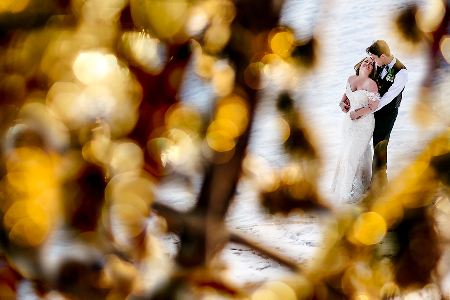 Bride and Groom on Mt Hood above Timberline Lodge in nature through trees