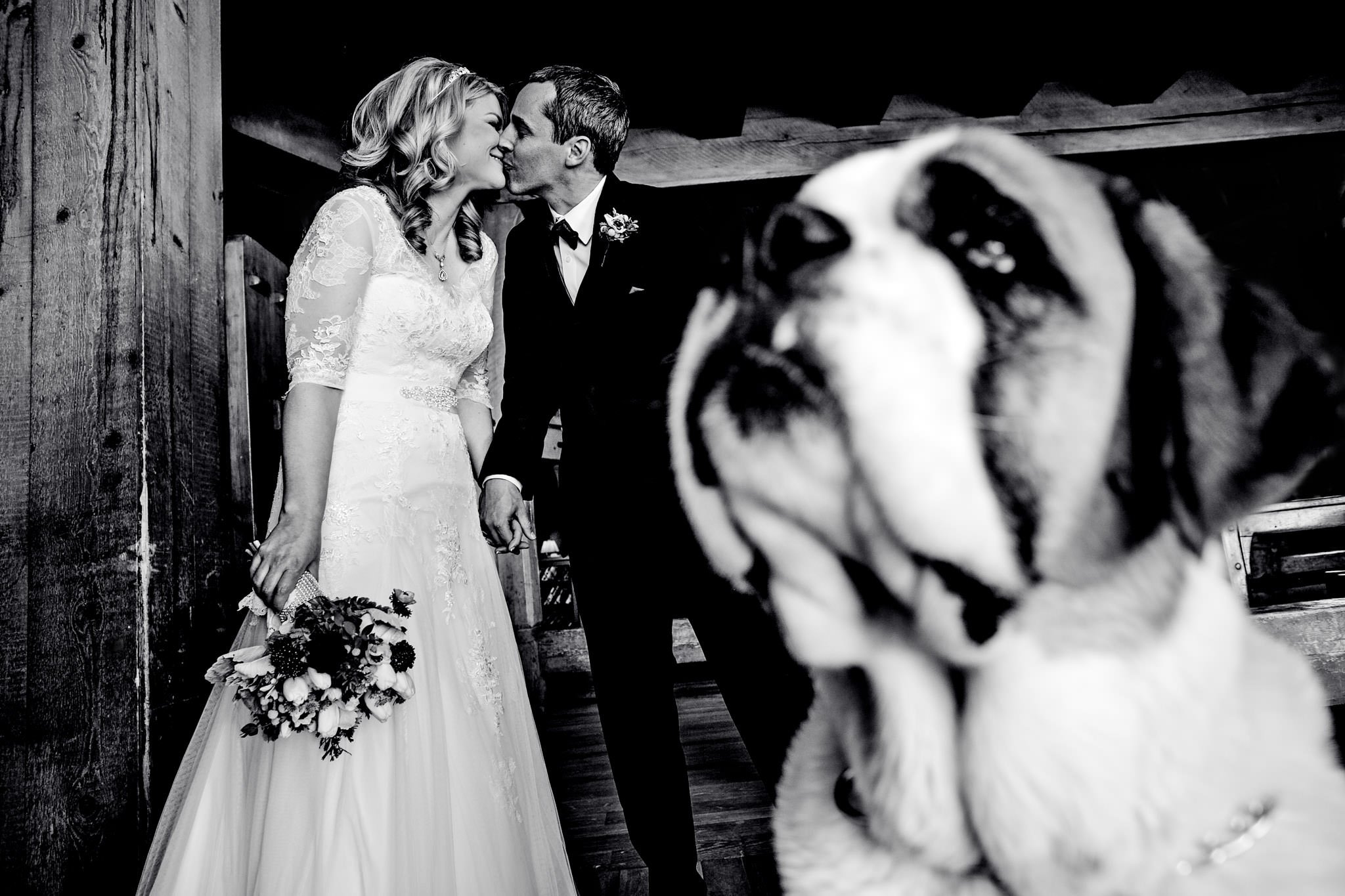Bride and Groom with big St. Bernard dog at Timberline Lodge