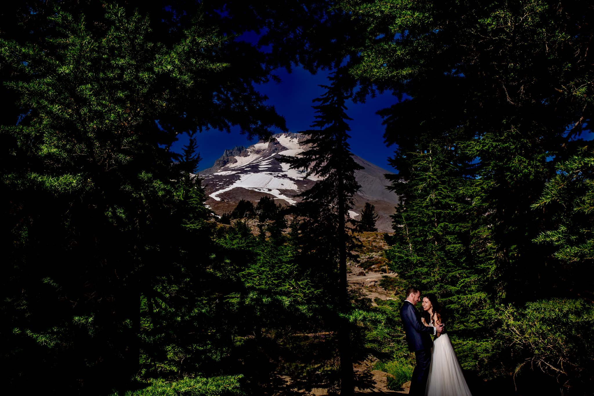 Bride and Groom laughing in trees at Timberline Lodge