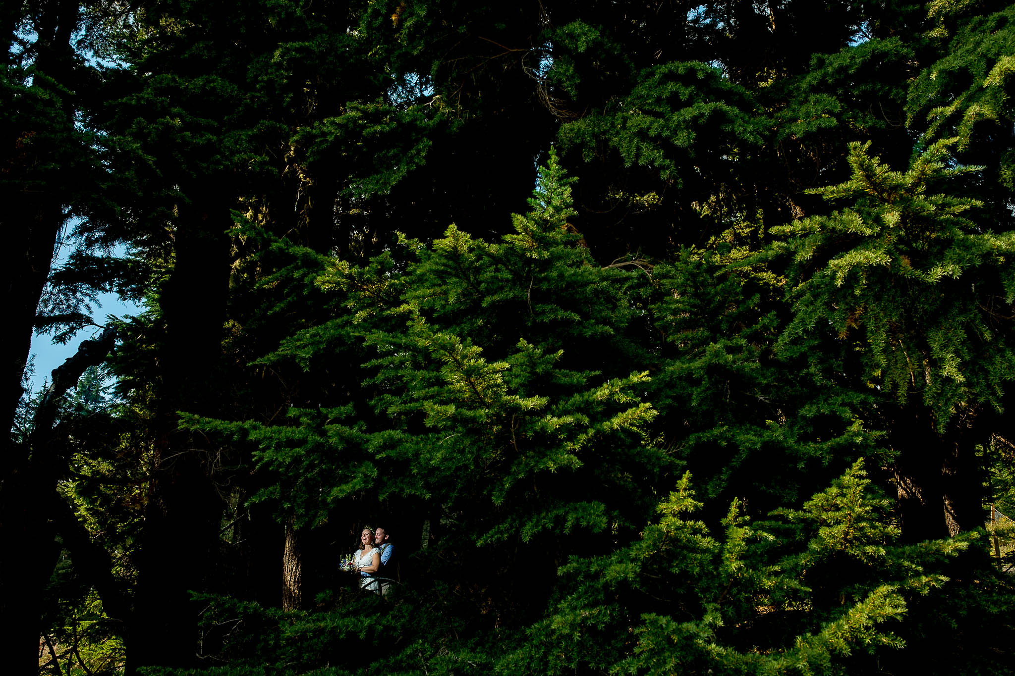 Bride and Groom in woods atop Timberline Lodge just before their wedding ceremony