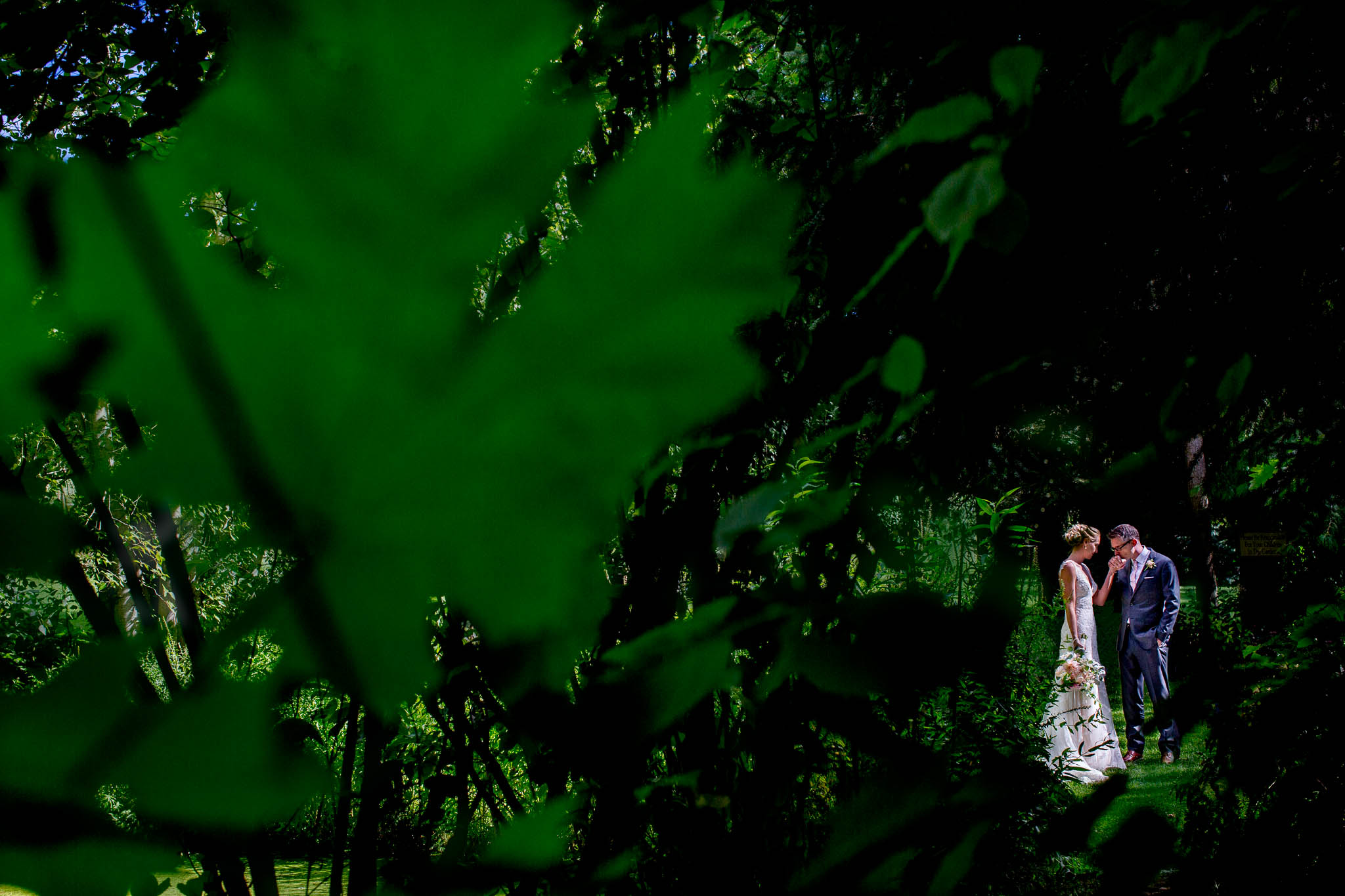 Bride and groom together in trees at Mt Hood Organic Farms