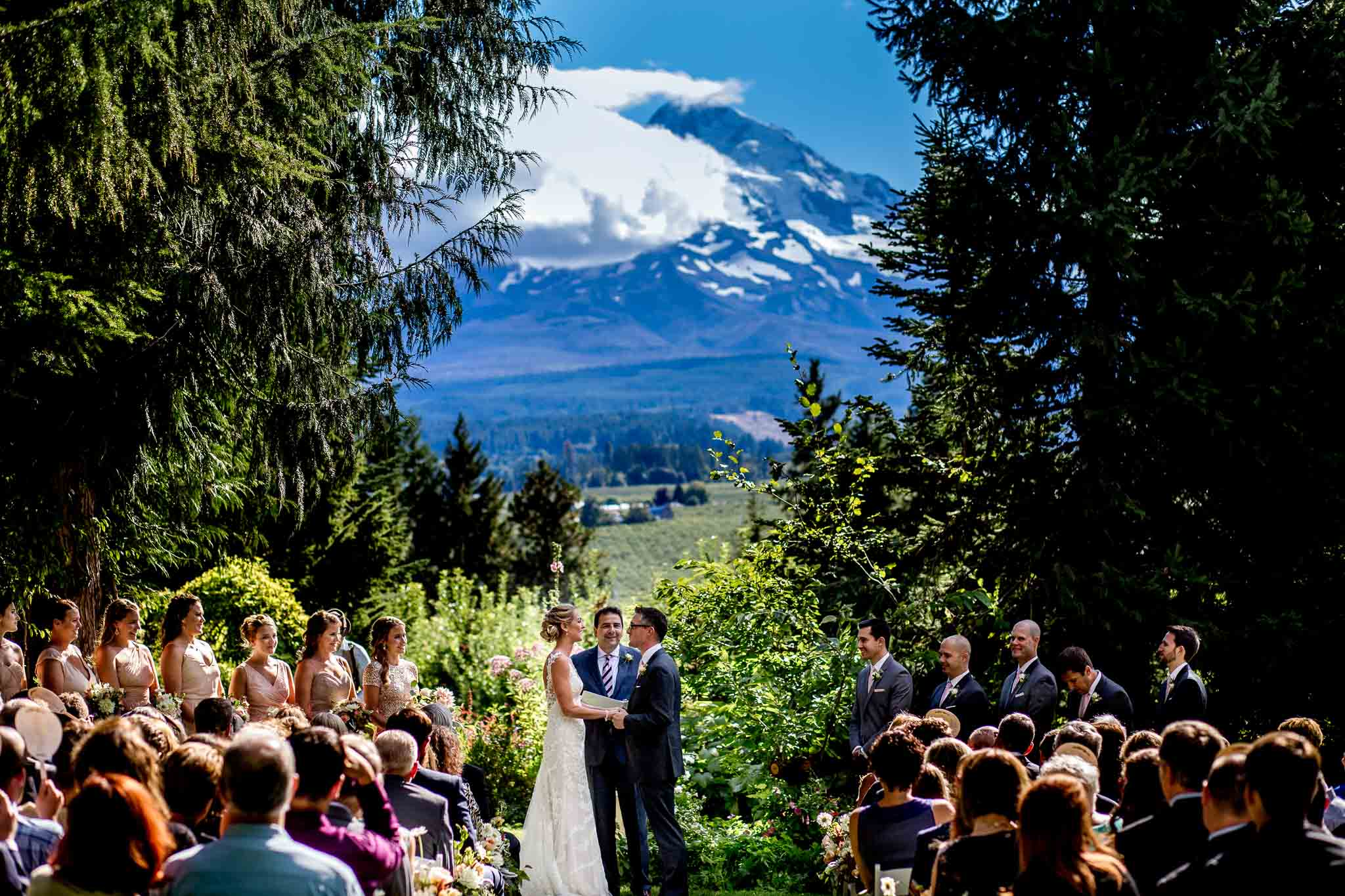 Wide angle shot of wedding ceremony at Mt Hood Organic Farms wedding ceremony