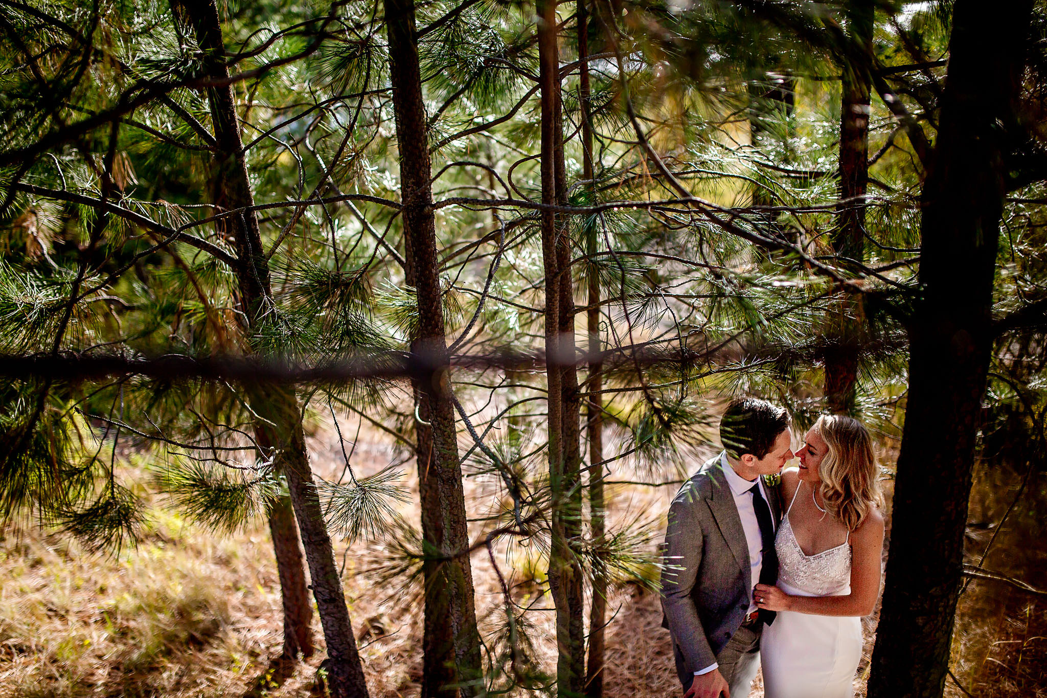 Bride and Groom intimate portrait in trees in Central Oregon at House on Metolious