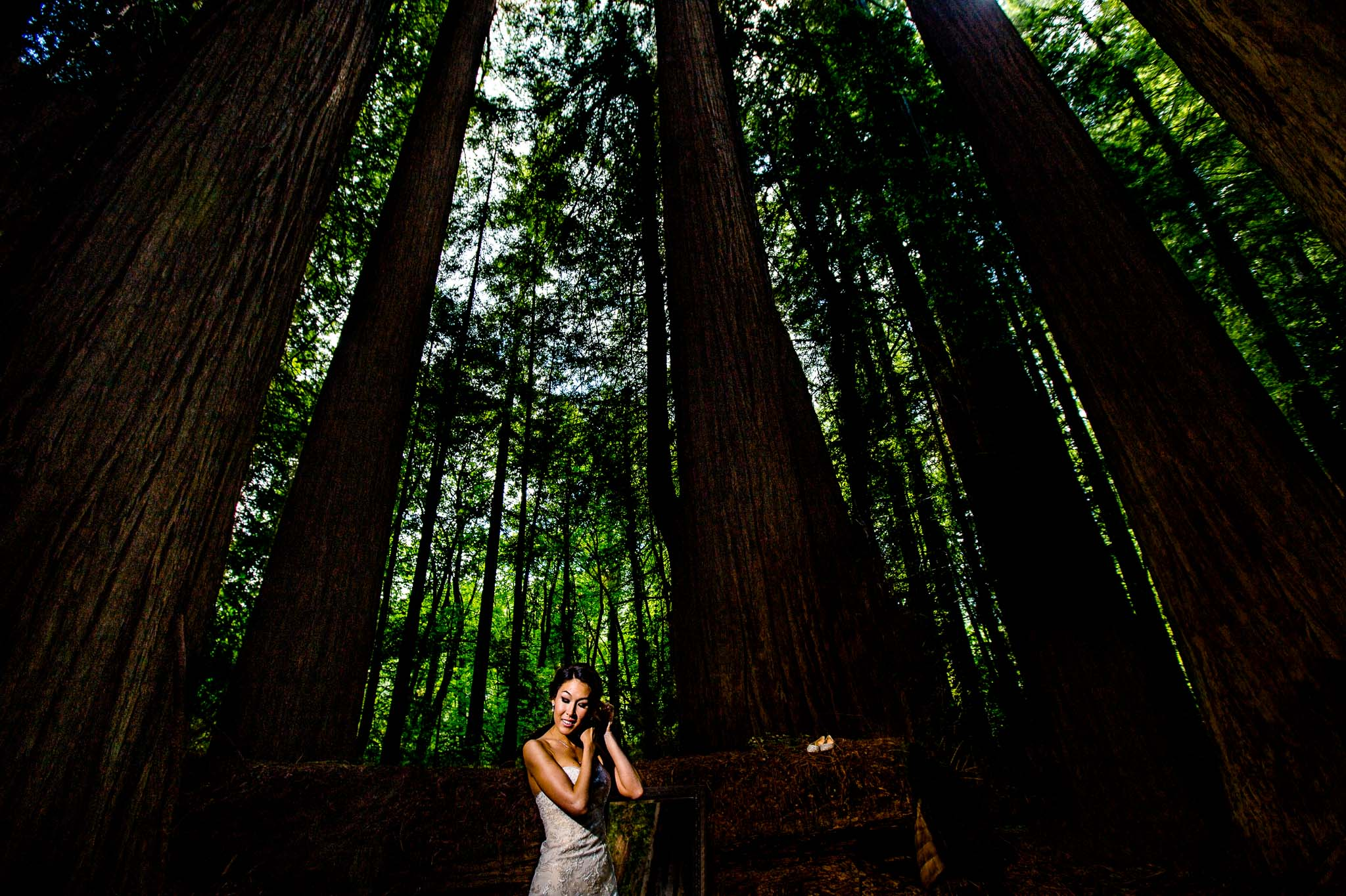 Bride getting ready in massive redwoods forest
