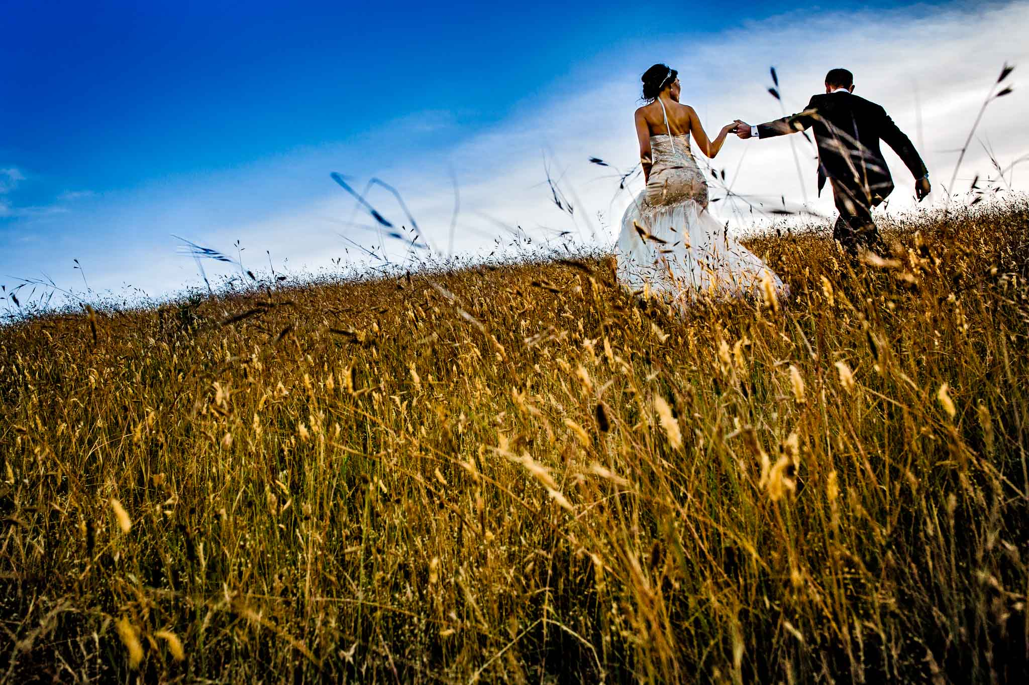 Bride and Groom walking into sunset up a field of wheat in Humboldt California JOS studios