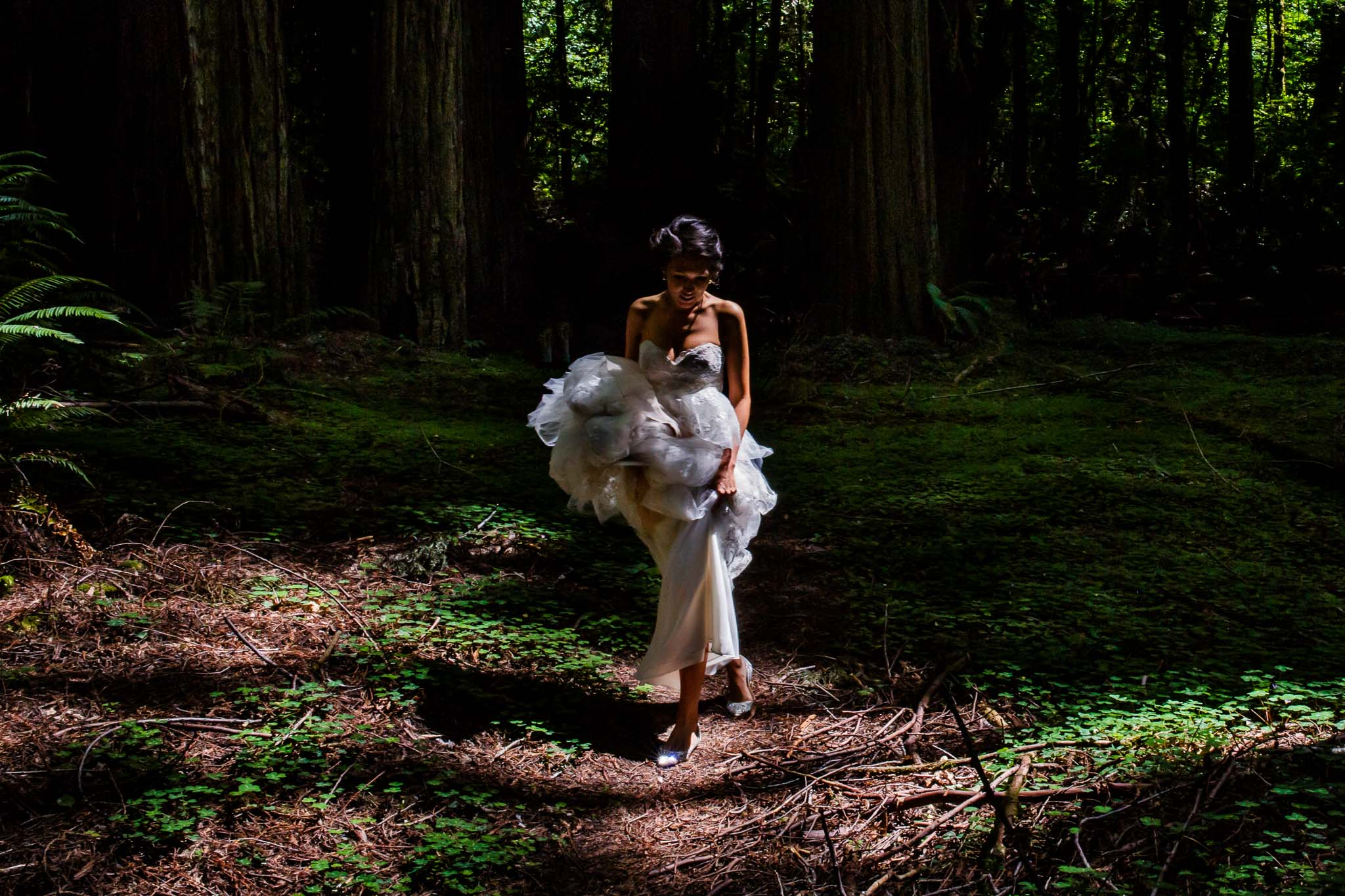 Bride walking through giant red wood trees